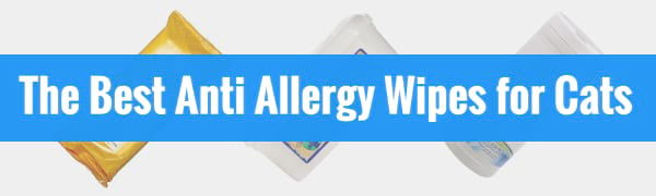 best anti allergy wipes for cats