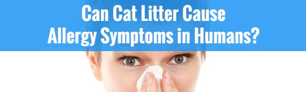 can cat litter cause allergy symptoms in humans