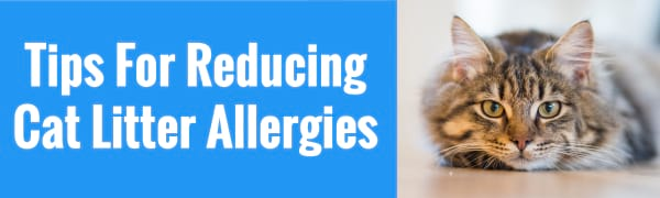 tips for reducing cat litter allergies